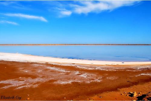 travel nature landscape tunisia ngc natur oneofthebest afryka sonice elisabethgaj eperke 100commentgroup whitegroup djerba2010 takenwithhardwork pacetoall