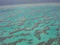 coral reef(0.0), lagoon(0.0), coral(0.0), atoll(0.0), marine biology(0.0), underwater(0.0), reef(0.0), aqua(1.0), sea(1.0), turquoise(1.0), azure(1.0), shoal(1.0), blue(1.0),