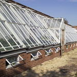 A stepped lean-to Hartley Greenhouse.