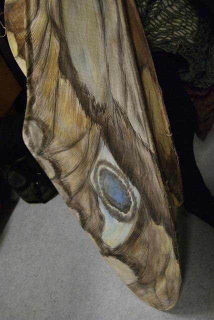 Header of mothy