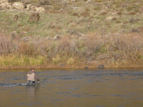 Second steelhead trip to the john day november 19 2010 for John day river fishing