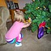 Putting up the Christmas Tree 2010