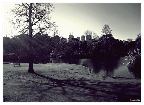 gardens nikon jardin australia victoria