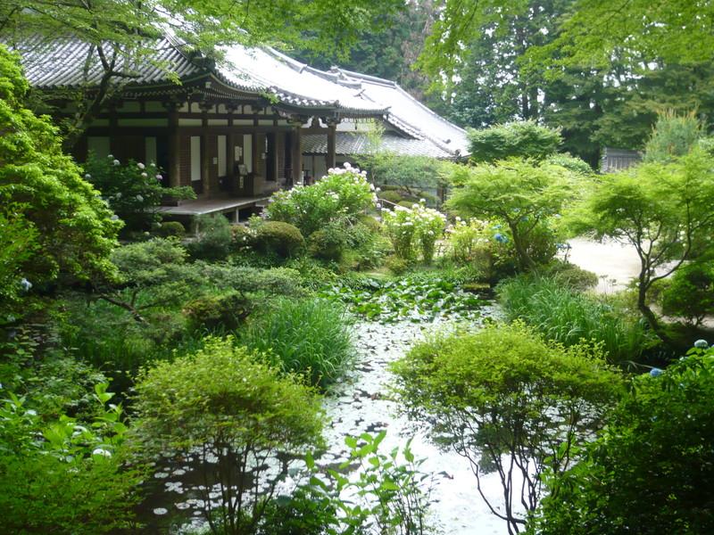 岩船寺の池 gansenji-pond