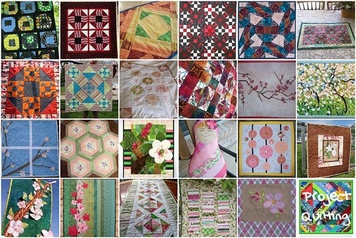 Pre Season Project QUILTING Challenge Projects
