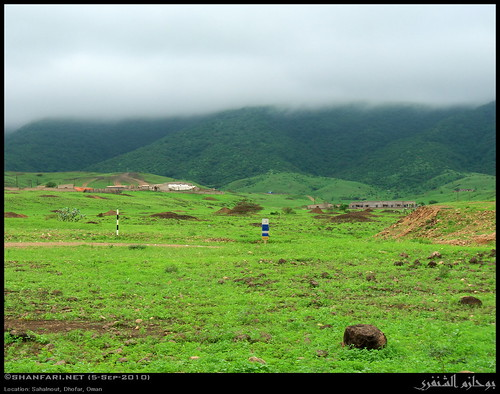 nature lumix countryside raw natural country panasonic greenery oman fz zufar rw2 salalah sultanate dhofar عمان khareef طبيعة سلطنة خريف ريف أخضر صلالة dufar صلاله ظفار الريف الخريف محافظة موسم خضرة dhufar governorate dofar fz38 fz35 dmcfz35 اخضرار arabianpeninsulacoastalfogdesert