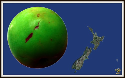 NZ Map on an Apple