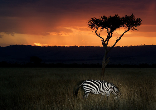 Sunset in Maasai Land