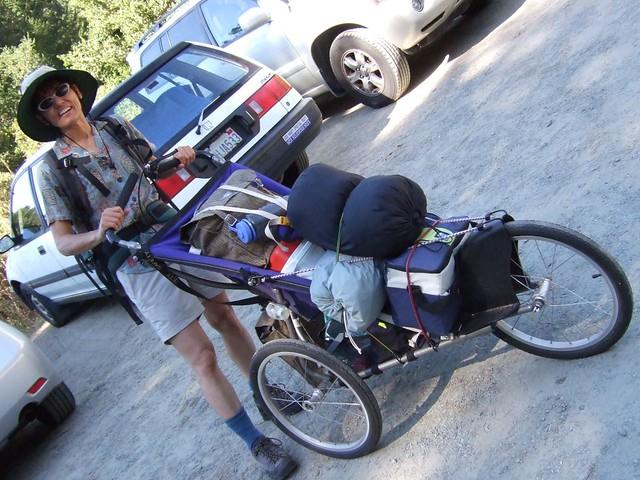 Baby Jogger Travel Bag Ireland
