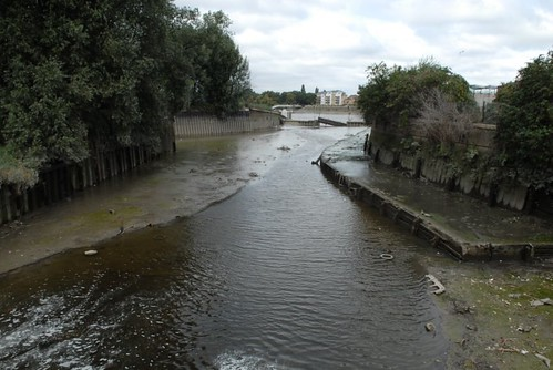 Wandle at Wandsworth