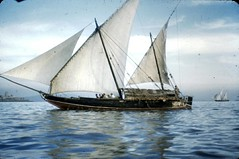 sail, sailboat, sailing ship, schooner, vehicle, sailing, ship, mast, sloop-of-war, tall ship, watercraft, boat,