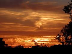 setting sun, wood street, catfield
