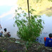 Memancing di Bengawan Solo. : Residents fishing in the  Bengawan River. Photo by Agam