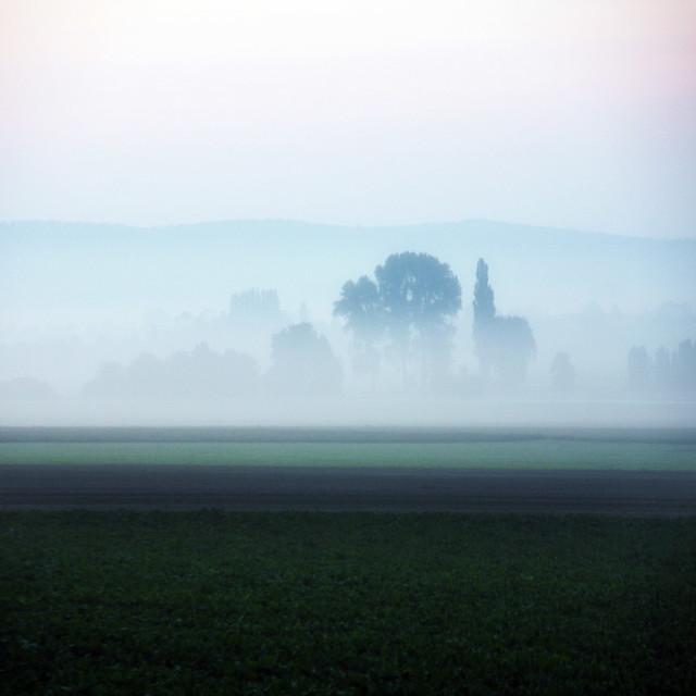 ~ hidden in the fog ~