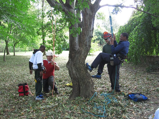 Arborists Chris Roddick and Travis Wolf teach Green Horizon students the basics of climbing and pruning trees.