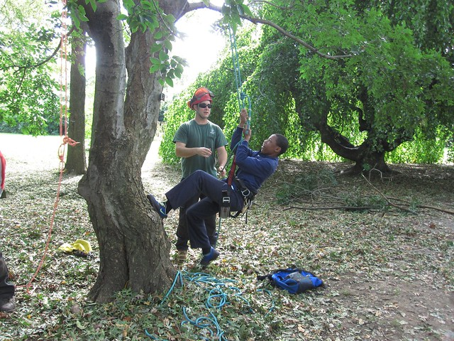 Travis Wolf helps guide a Green Horizon student up a tree at BBG.
