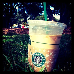 Lonely starbucks in the park