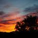 Sunset by nateOne