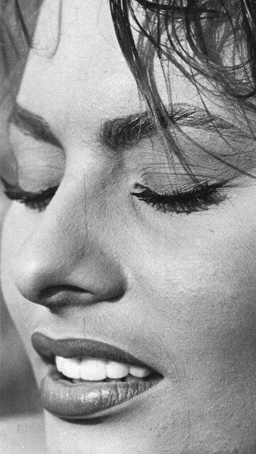 Header of Sophia Loren