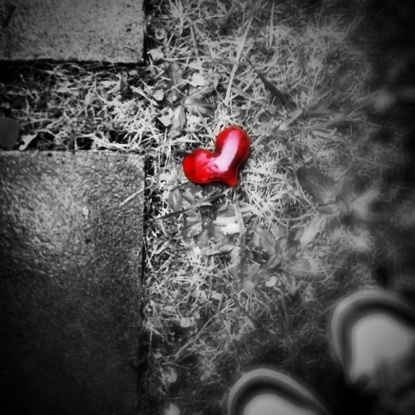 a heart left in rain | Flickr - Photo Sharing!