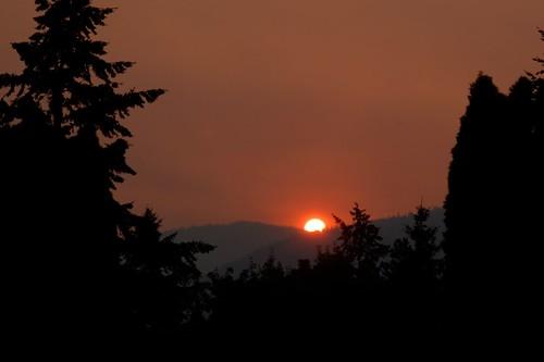 sunset fire forestfire