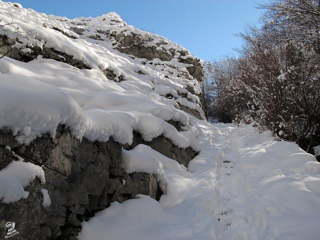 Caminando en la nieve- Estreno de la Canon PowerShot G12