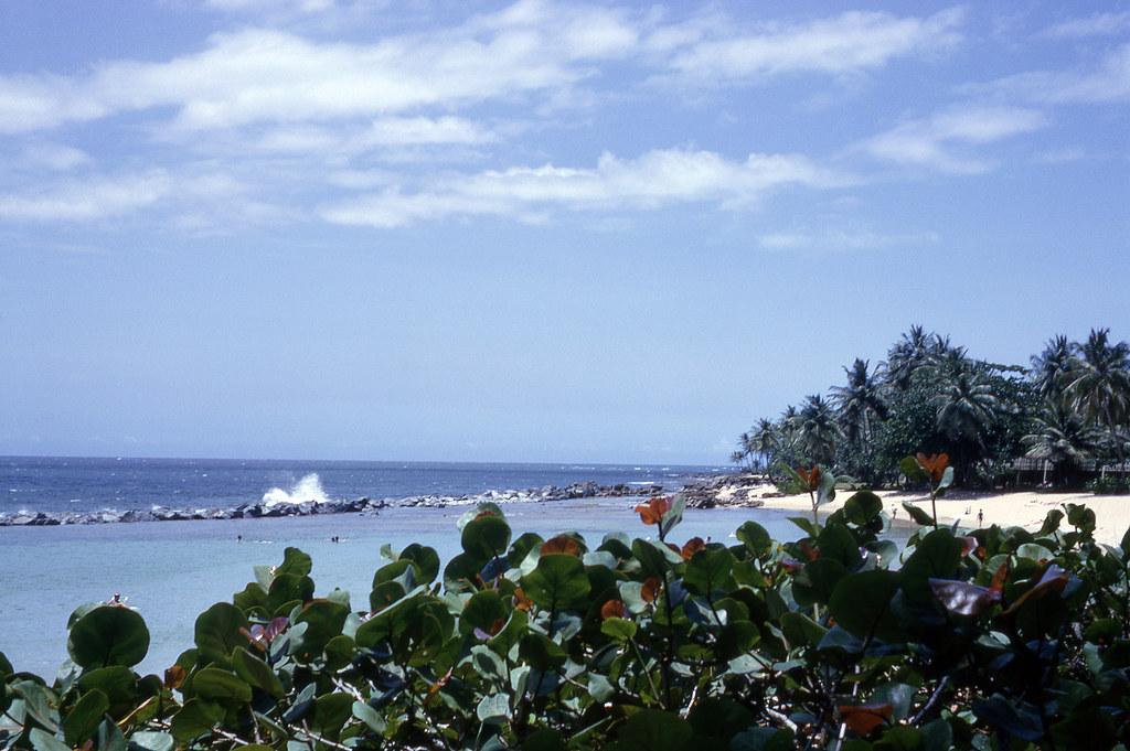 The beach at Dorado
