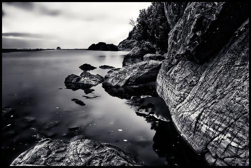 ocean trees beach water night dark humboldt rocks moonstonebeach trinidadcalifornia
