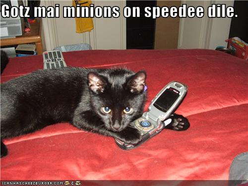 funny-pictures-cat-has-phone