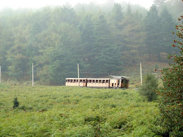 Larrungo tren ttipia II