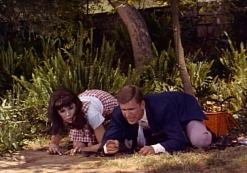 Marlo Thomas & Ted Bessell