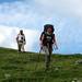 Starlight Trail 098es
