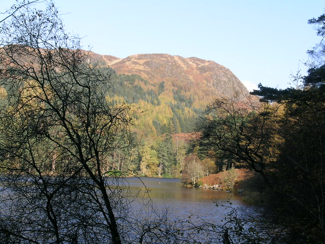 Across Loch Trool to Esconcan