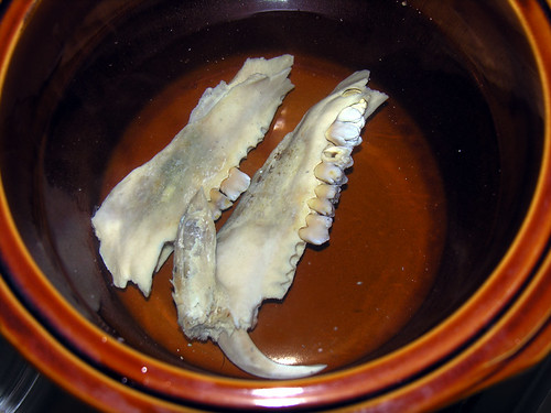 BONELUST - Wild Boar Rotten Jaw Teeth Removal 6