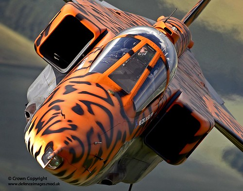 A specially painted Jaguar aircraft takes to the skies over RAF Coningsby for a final flight