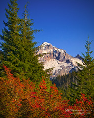 Autumn on Mount Hood