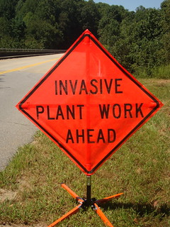 invasive plant sign