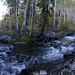 McGee Creek Pano by sandy.redding