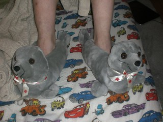 Seal Slippers