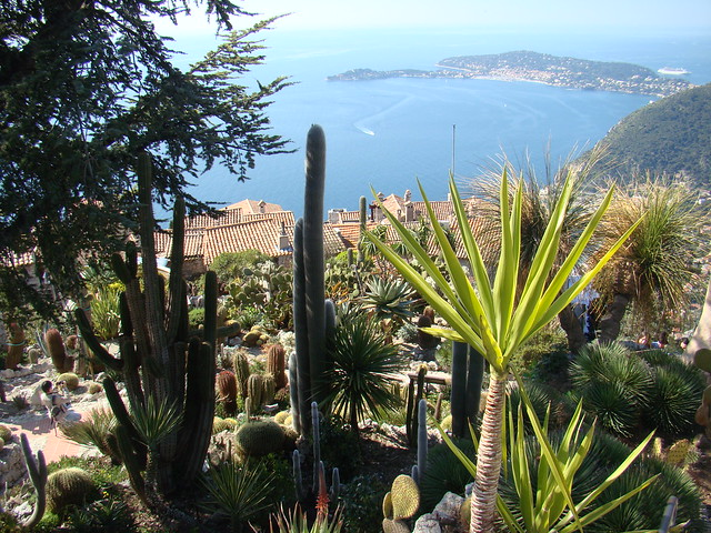 Eze (France) : the exotic garden in the perched village ...
