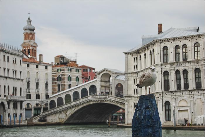 Venezia_0247