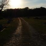 sunset road near cemetery