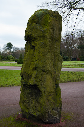 Lichen: West Park erratic