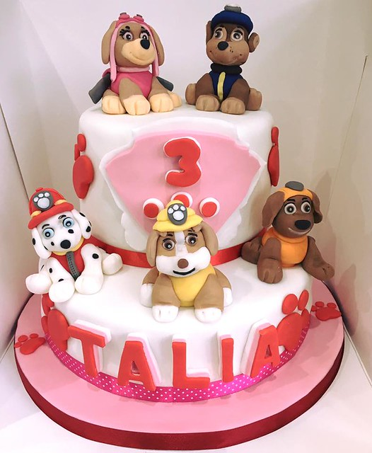 Paw Patrol Cake by Cakey Couture