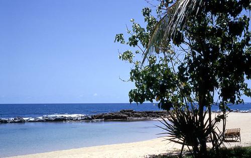ocean blue sea vacation sky beach water hotel puertorico horizon bluesky resort palmtrees hyatt kodachrome oceanview 1964 skyblue dorado 35mmslide doradobeach doradobeachhotel hyattdoradobeachhotel hyattdorado hyattdoradobeachresortandcountryclub processedjune1964
