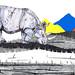 Rhino by www.sandradieckmann.com