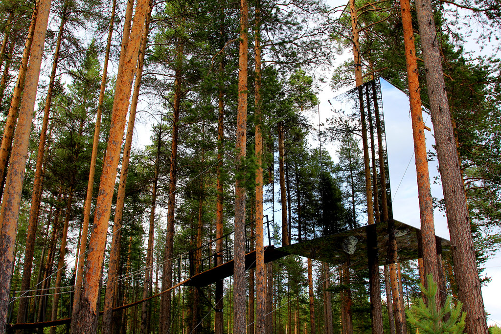 Treehotel 22:  Mirror Cube, the invisible room.