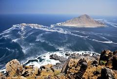 Isla de Pan de Azúcar - Chile