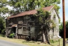 Virginia | Millwood
