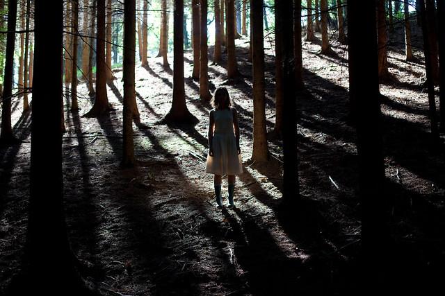 New Generation Wilderness Travel Trailers